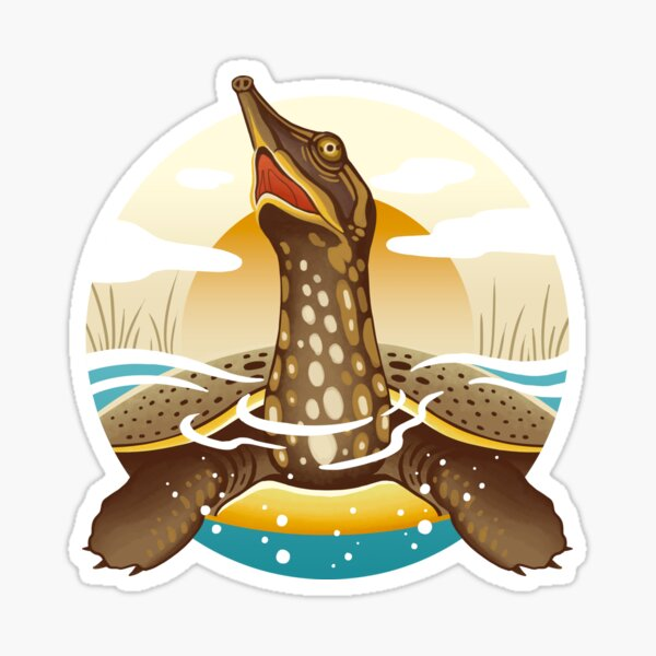 The Circles of Life: Spiny Softshell Turtle Sticker