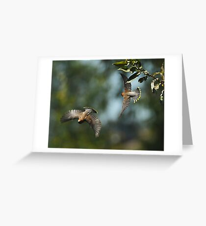 Two-Fer Greeting Card