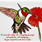 Humming Bird - With Philippians 4:6 Bible Verse by EuniceWilkie