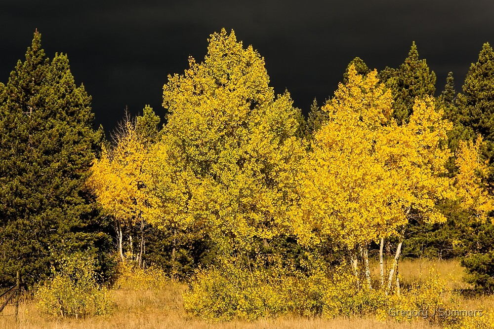 Colorado Storm Clouds Surround Gold by Gregory J Summers