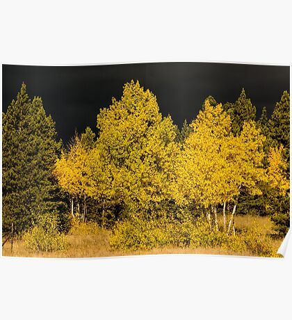 Colorado Storm Clouds Surround Gold Poster