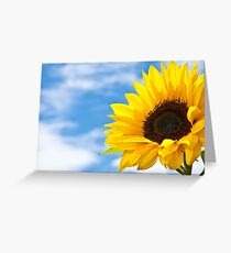 Summers Here Greeting Card