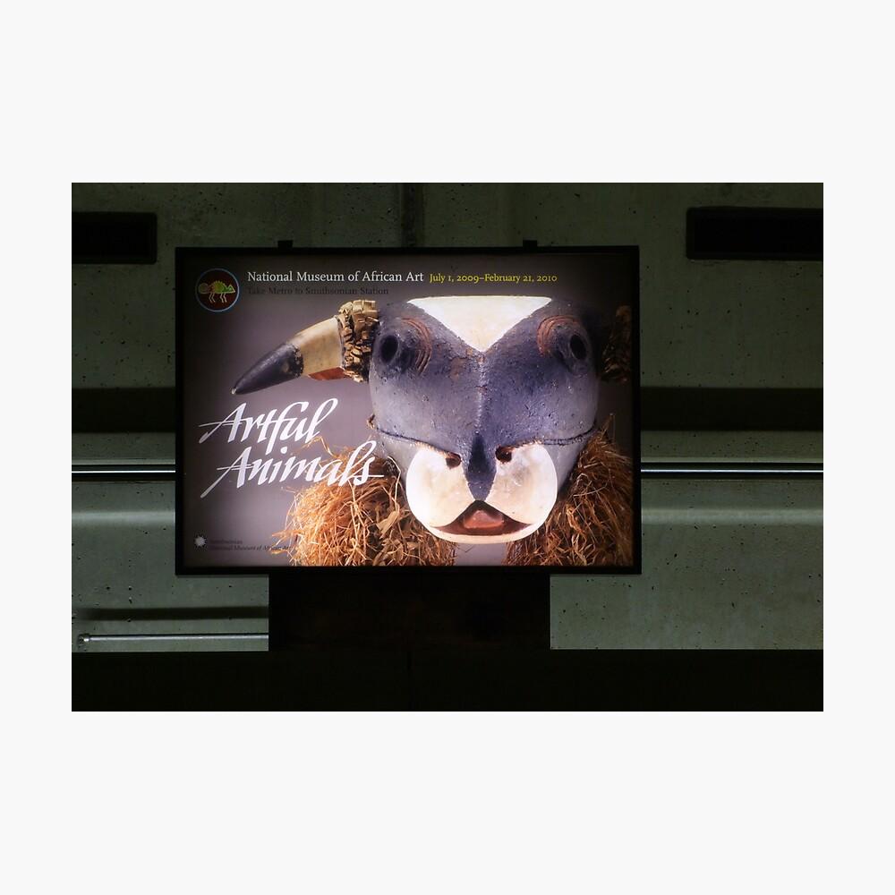 Artful Animals Lámina fotográfica