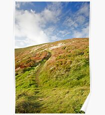 South West Coast Path Poster