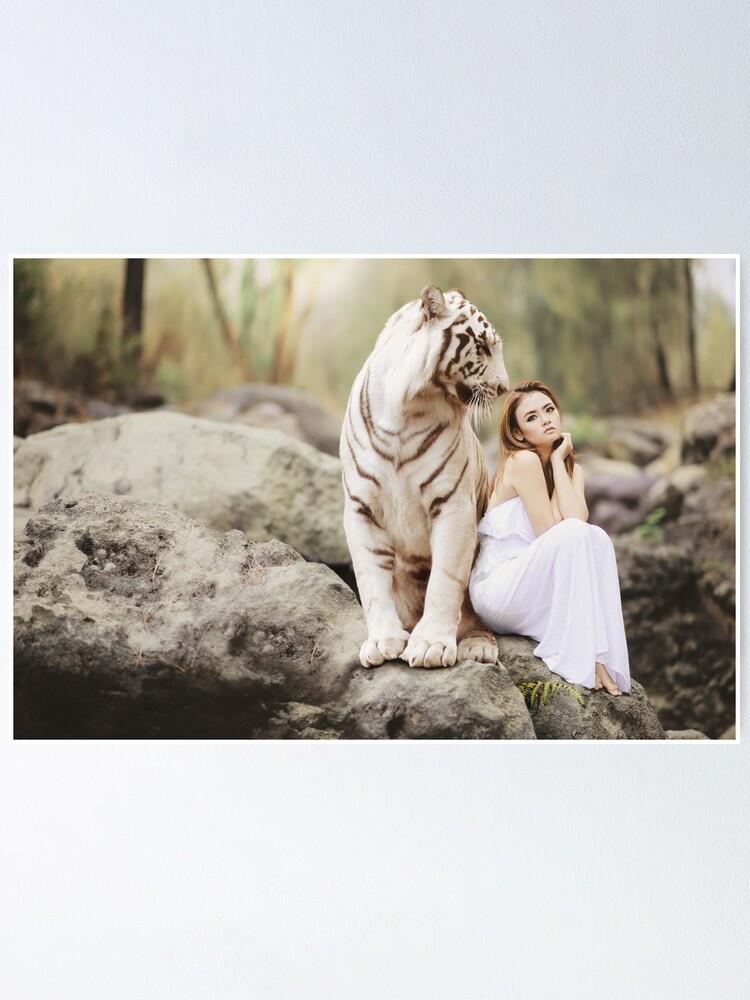 Big Cat Tiger Poster White Bengal Tiger