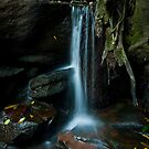 Small Waterfall - Somersby Falls by Jeff Catford