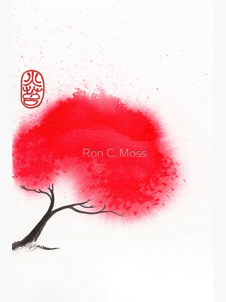 Flame Tree by ronmoss