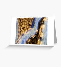 black headed python detail Greeting Card