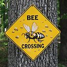 Bee Crossing by Southern  Departure
