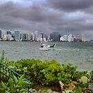 Water Plane by photorolandi