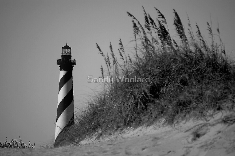 Cape Hatteras Lighthouse by Sandy Woolard