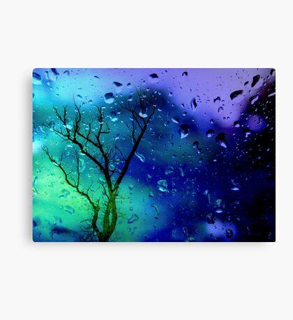 It's raining... Canvas Print