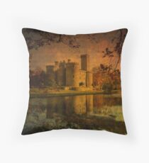Textured Chateau, Haute Vienne, France Throw Pillow