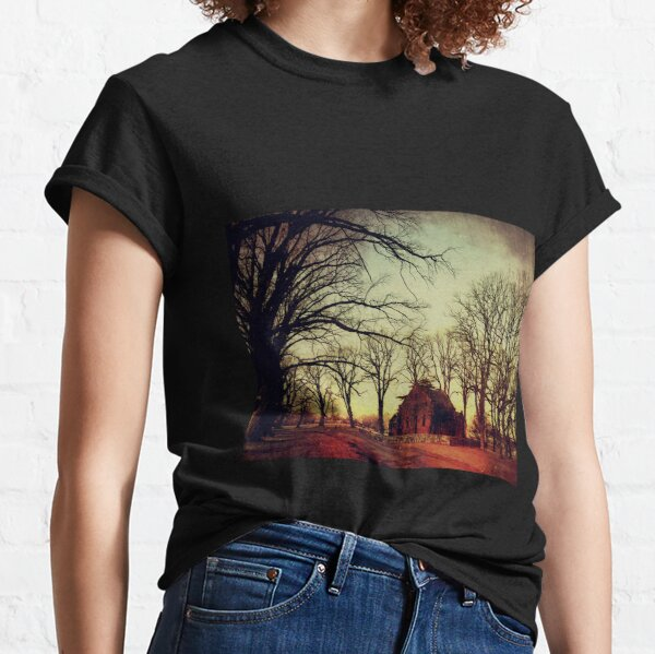 Gostwyck Chapel Classic T-Shirt