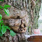 The Tea, The Tree, & The Lady by Nicole  McKinney