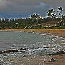 Stormy Napili Kai by sandra greenberg