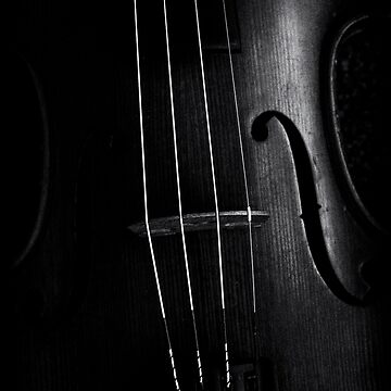 Violin 1 by ea-photos