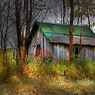 """"""" Fall around  the Shack """" by canonman99"""