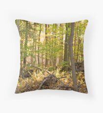 Golden Glade Throw Pillow