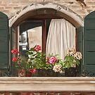 Italian window by Victoria  _Ts