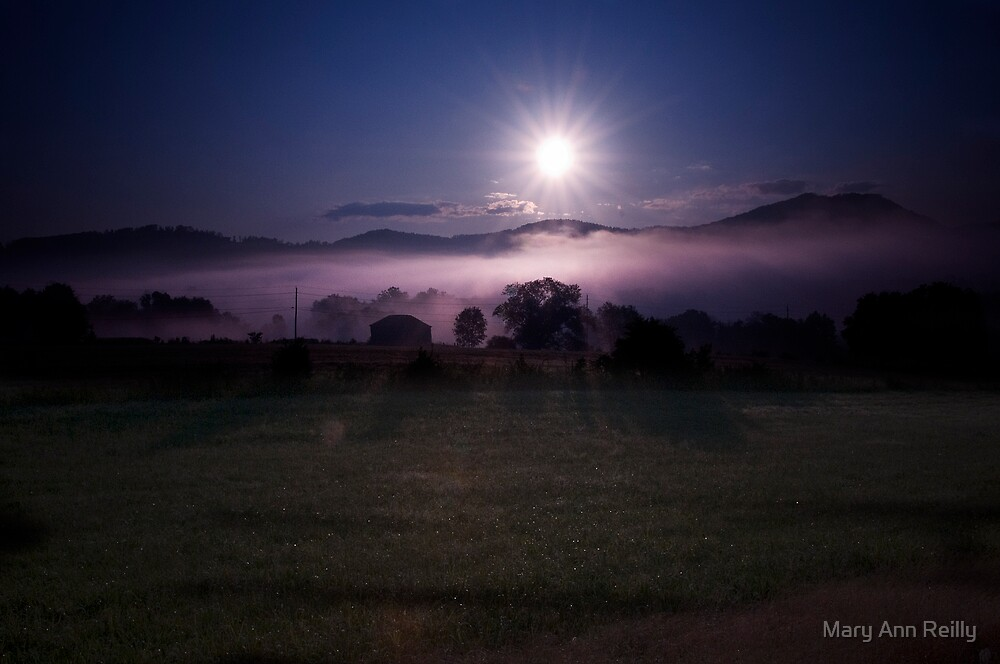 Morning Star by Mary Ann Reilly