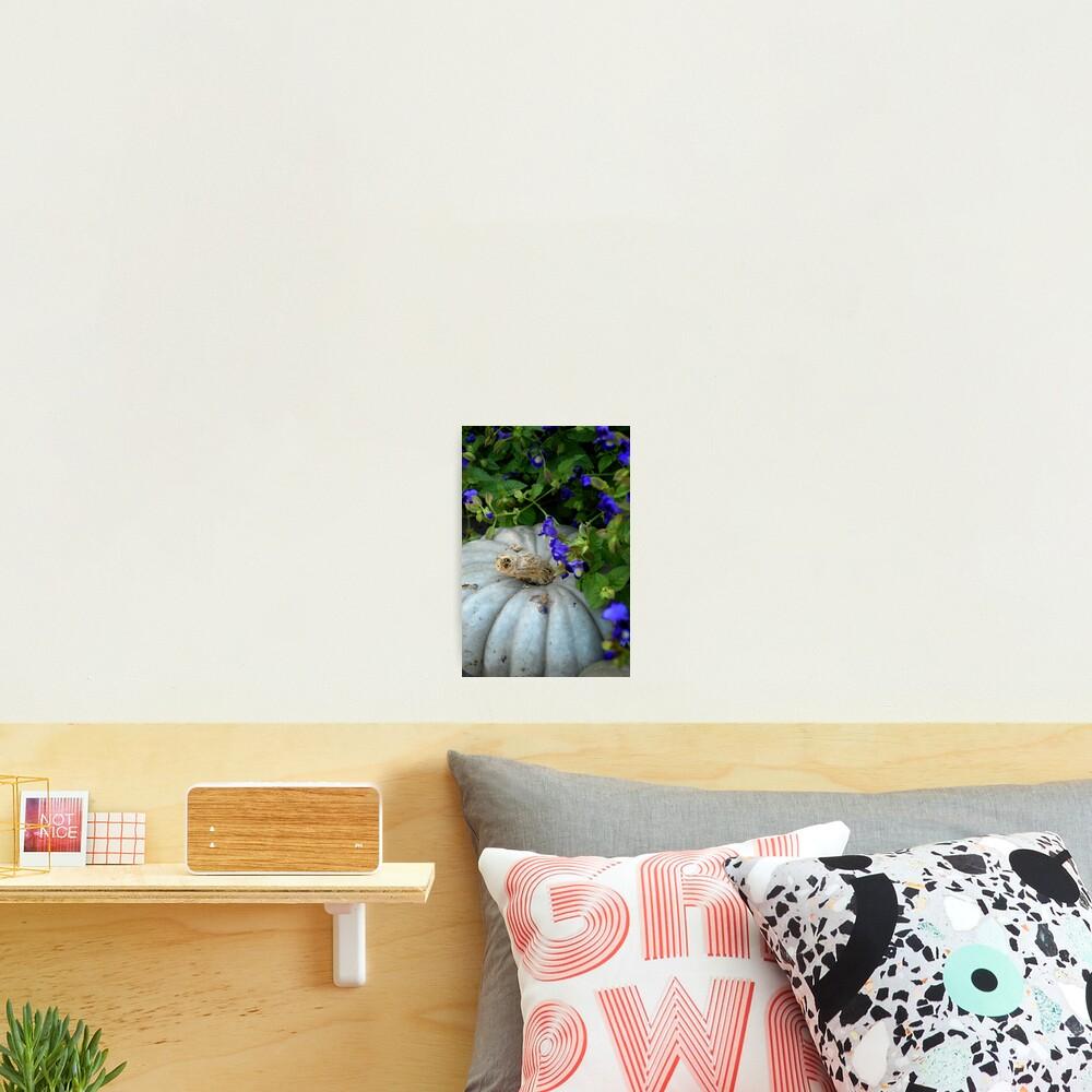 Pumpkin and Purple Flowers Photographic Print