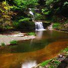 Ithaca's Buttermilk falls IX by PJS15204