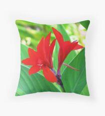 Canna-lily (Canna) Throw Pillow