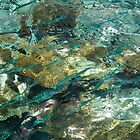 Abstract of the Underwater World. Production by Nature by JennyRainbow
