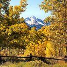 Wilson Peak near Telluride, Colorado by Robert W. Spath II