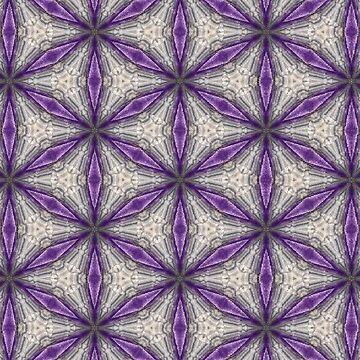 Purple Bliss by Hgomez84