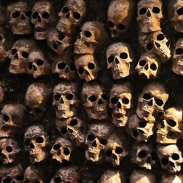 Wall of Skulls by conchcreations