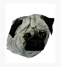Pug Dog Fine Art Contemporary Acrylic Painting Photographic Print