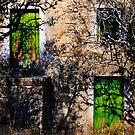 green doors, abandoned house in Monsanto, Beira Baixa, Portuga by Andrew Jones