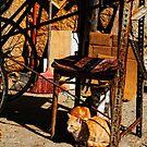 cat's workshop by Andrew Jones