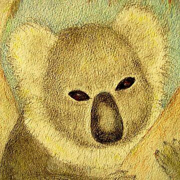 """""""Koala watching the Sunset"""" by MardiGCalero"""