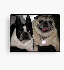 Smushed face friends! Canvas Print