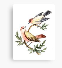 Bird lovers Canvas Print