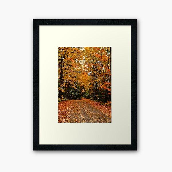Oxtongue River Road Framed Art Print