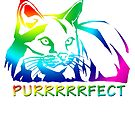 Rainbow Cat Purrrrfect by tinymystic