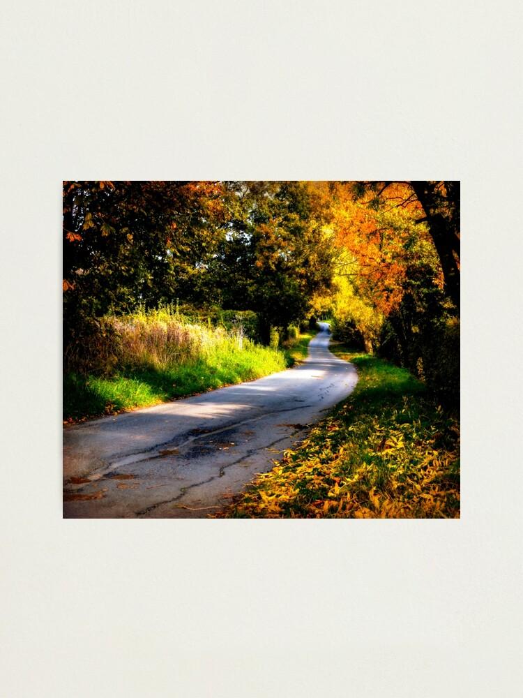 Alternate view of Autumn Dreams. Photographic Print