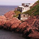 Fort Amherst, St.John's by Michael Skeard