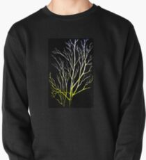Winter Trees Pullover Sweatshirt