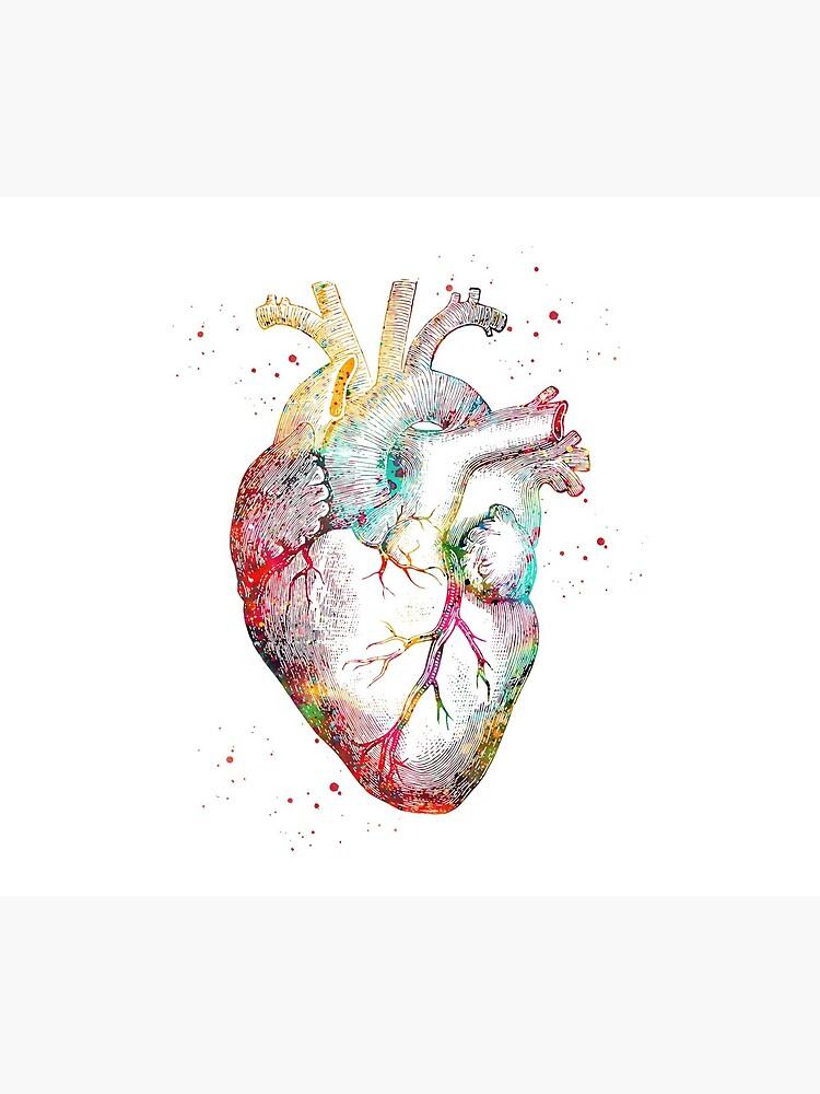 Human Heart by erzebetth