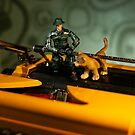 The 1:18 Animal Rescue Team - Lion Cub on old Typewriter by Martine Carlsen