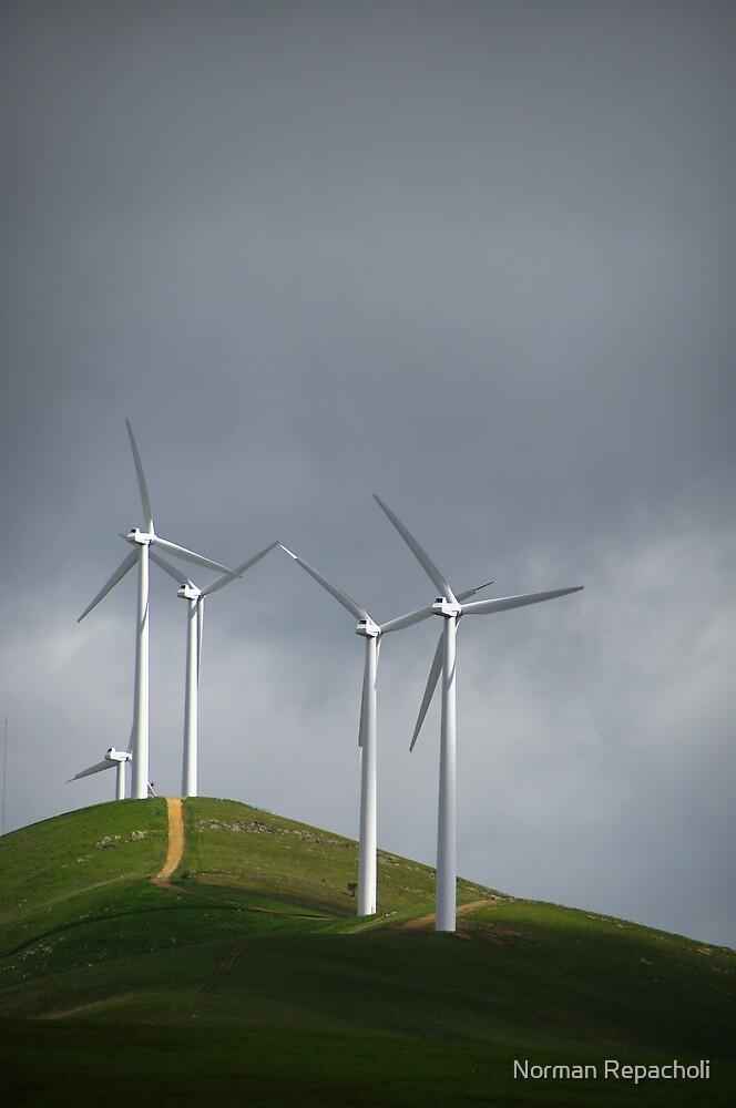 Windy Hill by Norman Repacholi
