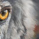 Hello Darkness My Old Friend - wolf eye closeup  by Peter Williams