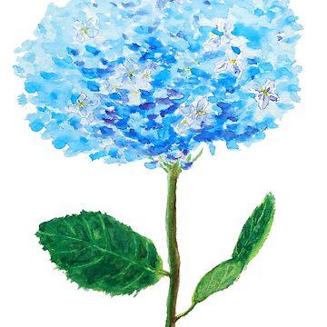 abstract blue hydrangea watercolor  by ColorandColor