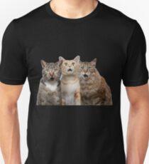 cat t-shirt -Potter Cats t-shirt, Harry Cute - Gifts For Cat  Unisex T-Shirt