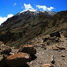 Mount Kilimanjaro by Kyle Jerichow